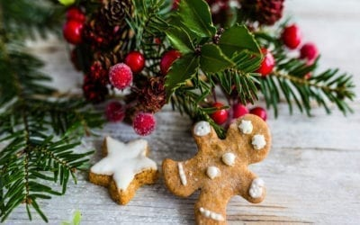 Recipe: Dr. Jiwani's Paleo Vegan Grain-Free Gingerbread Cookies (Low Carb Gluten-Free Dairy-Free Soy-Free for Paleo Keto & Candida Diets)