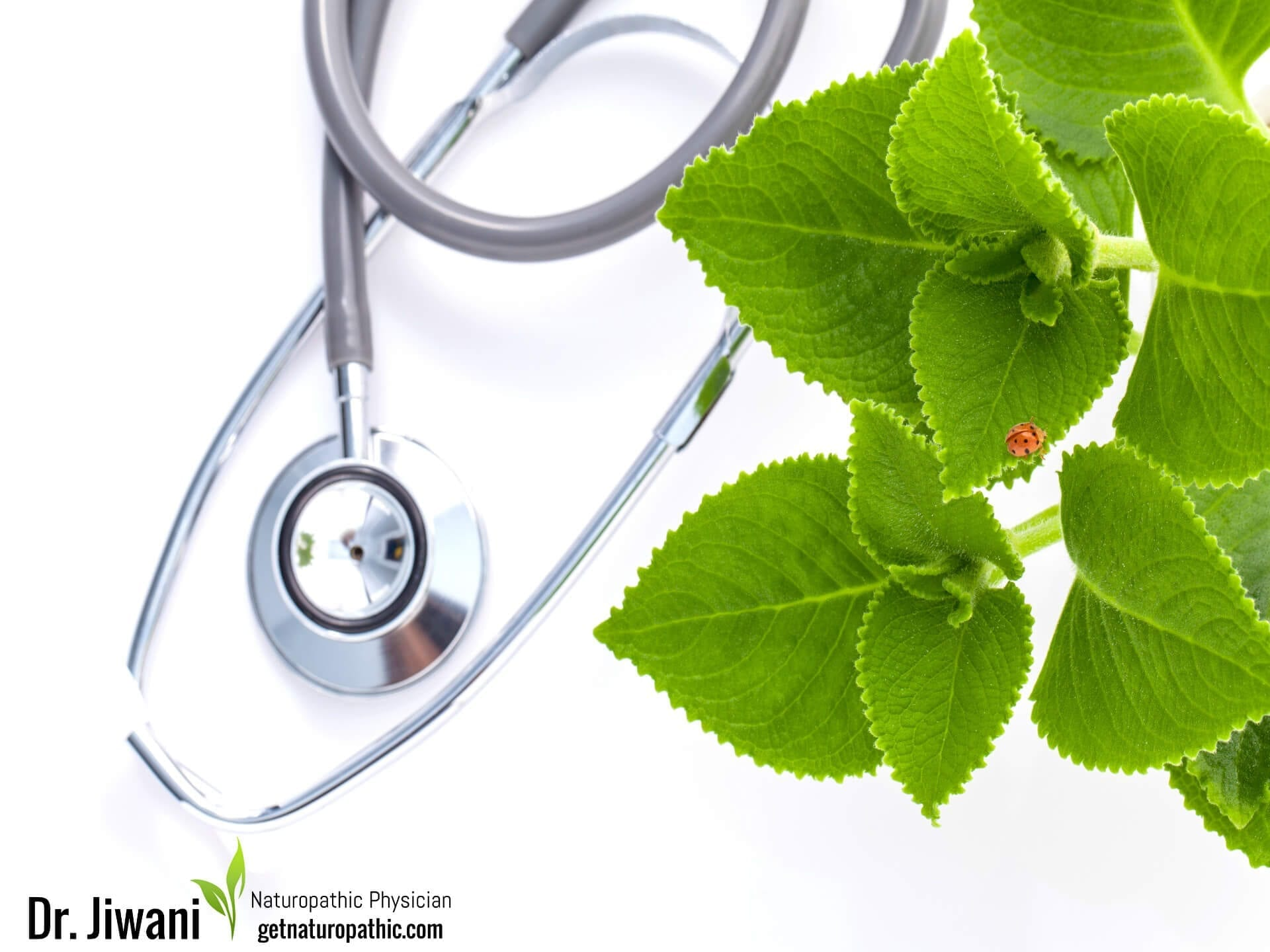 About | Dr  Jiwani Naturopathic Doctor Vancouver Burnaby Surrey