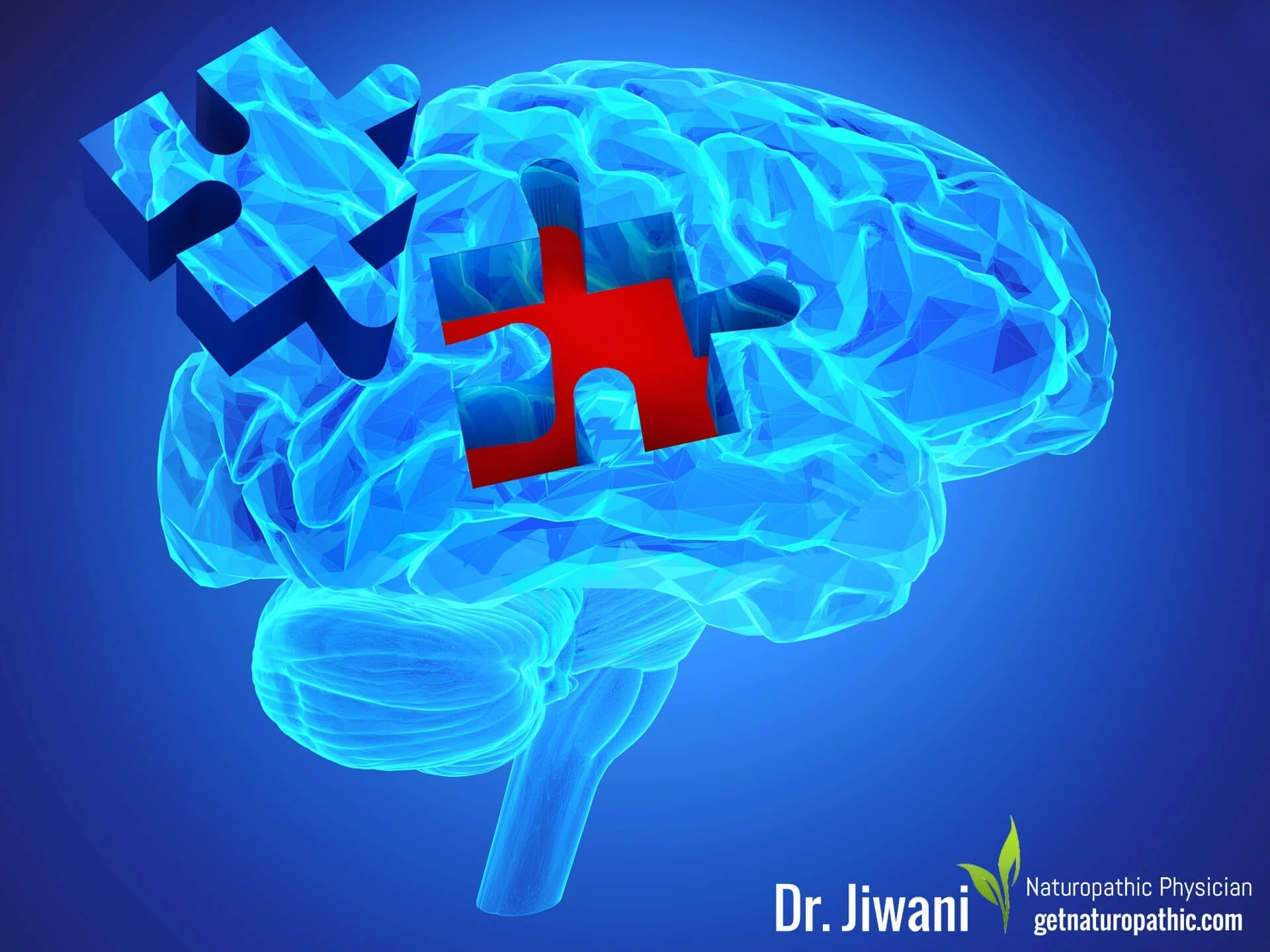 DrJiwani Intermittent Fasting for Health, Energy & Weight Loss Brain Function* | Dr. Jiwani's Naturopathic Nuggets Blog
