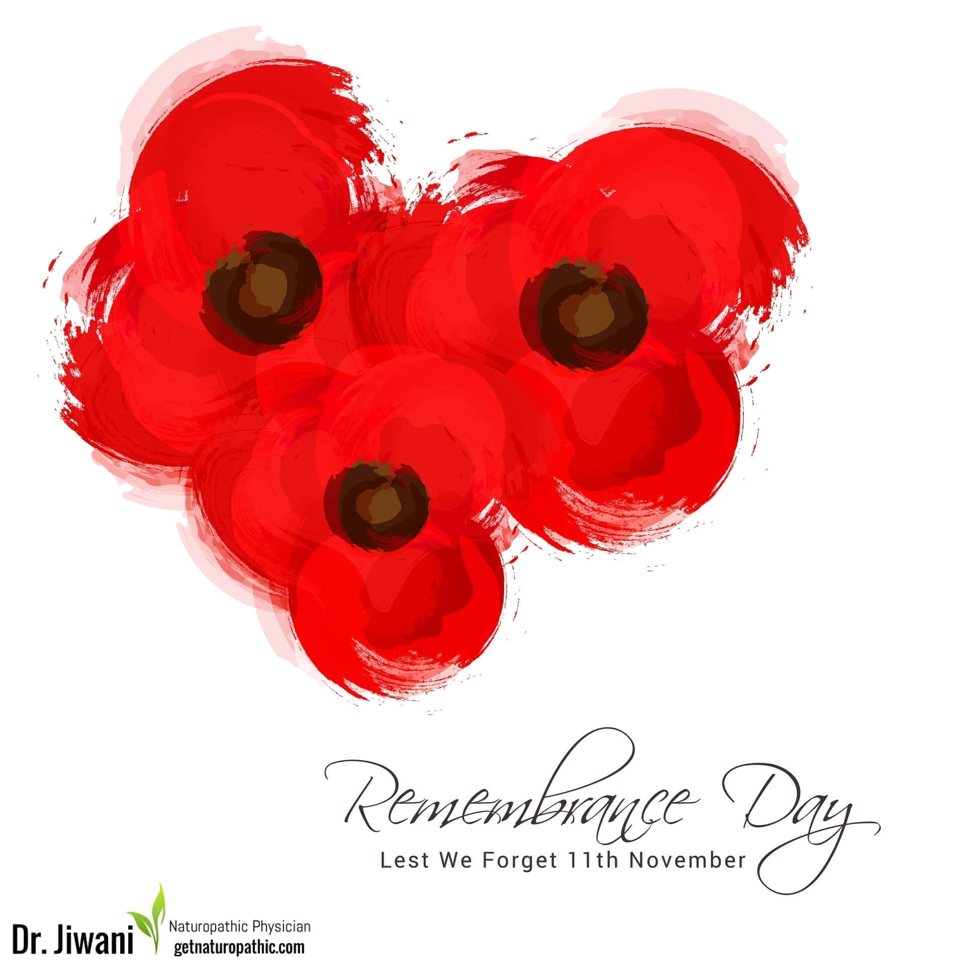 Remembrance Day: Lest We Forget | Dr. Jiwani's Naturopathic Nuggets Blog