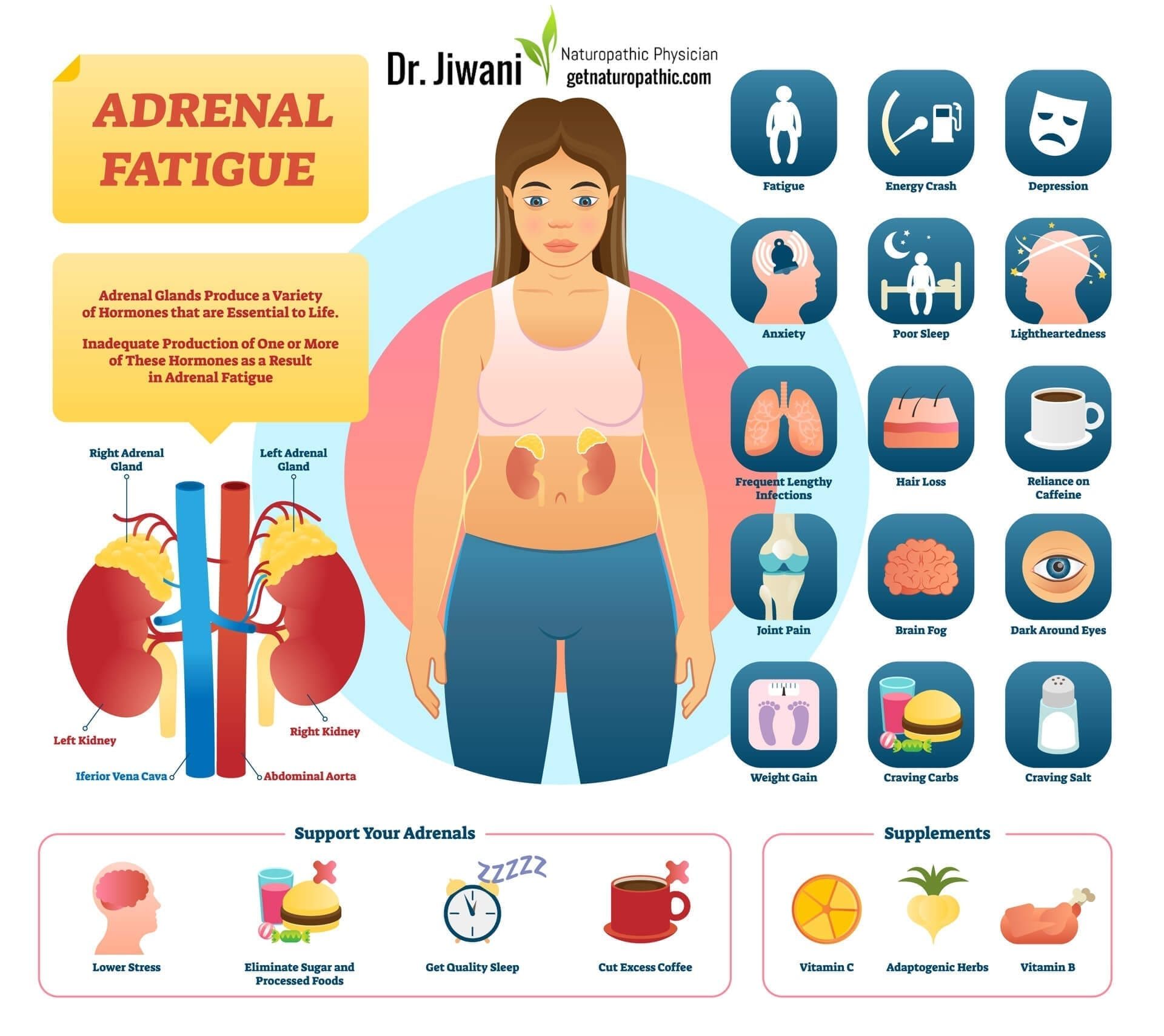 Dr. Jiwani Adrenal Fatigue: When You're Too Tired to Enjoy Life! Infographic | Dr. Jiwani's Naturopathic Nuggets Blog
